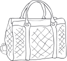 A handbag (sac à main)